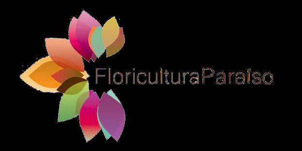 Floricultura Paraíso Atacado E Varejo De Plantas E Flores São